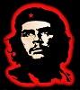 Che Kuzya